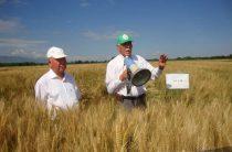 Новые технологии и сорта для земледельцев