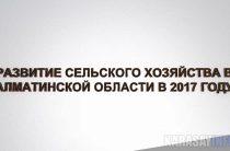 Сельское хозяйство Алматинской области набирает обороты